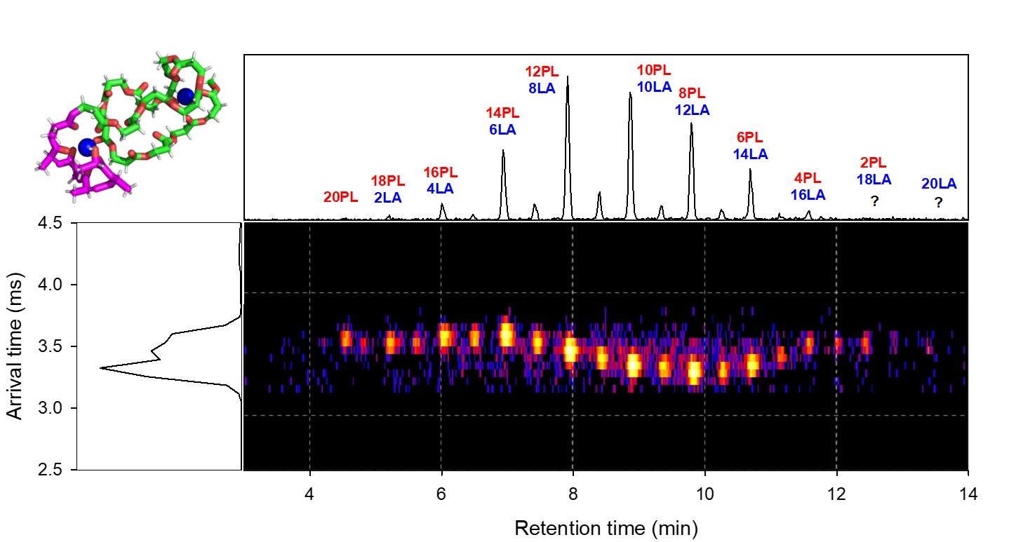 New paper on the analysis of isomeric homo and copolymers by ion mobility mass spectrometry